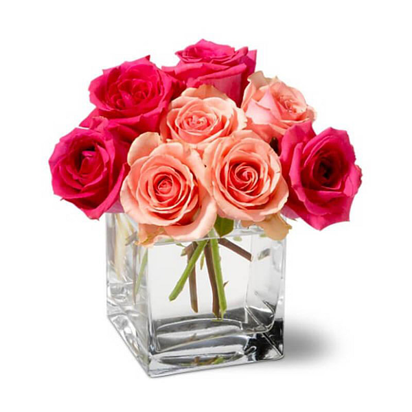 BUNCH OF PINK & RED ROSES