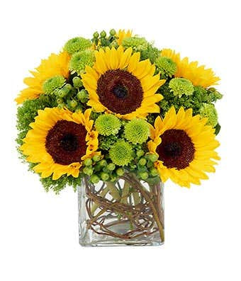 Happy Mother's Day Sunflower