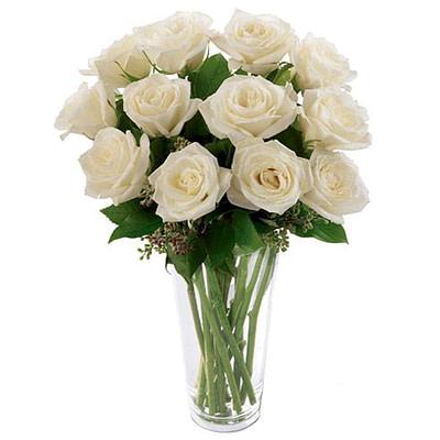 Long Stem White Roses - sendflowers.pk