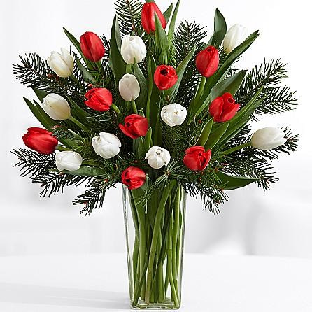 Tulips with Fresh Douglas Fir SendFlowers To Pakistan