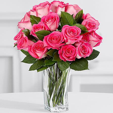 15 Pink Fresh Roses - Sendflowers.pk