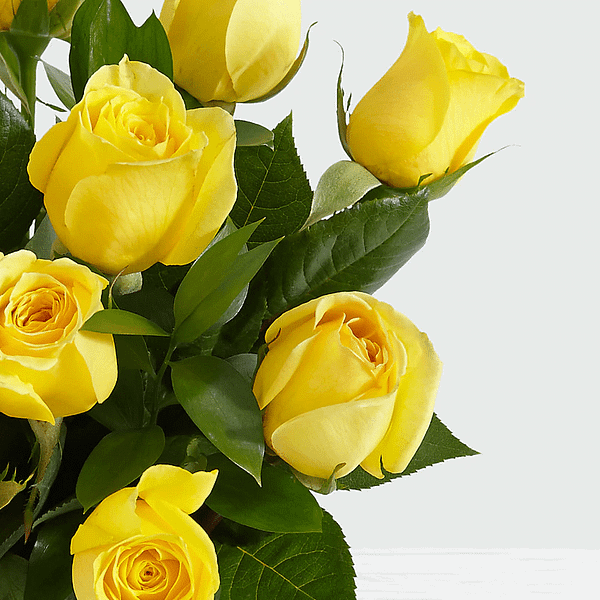 Long Stem Yellow Roses - 1 - Online flower delivery Pakistan